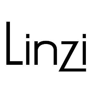 Linzi Shoes logo